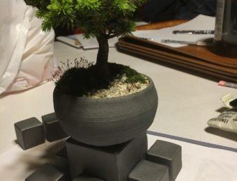 盆栽と瓦キューブ